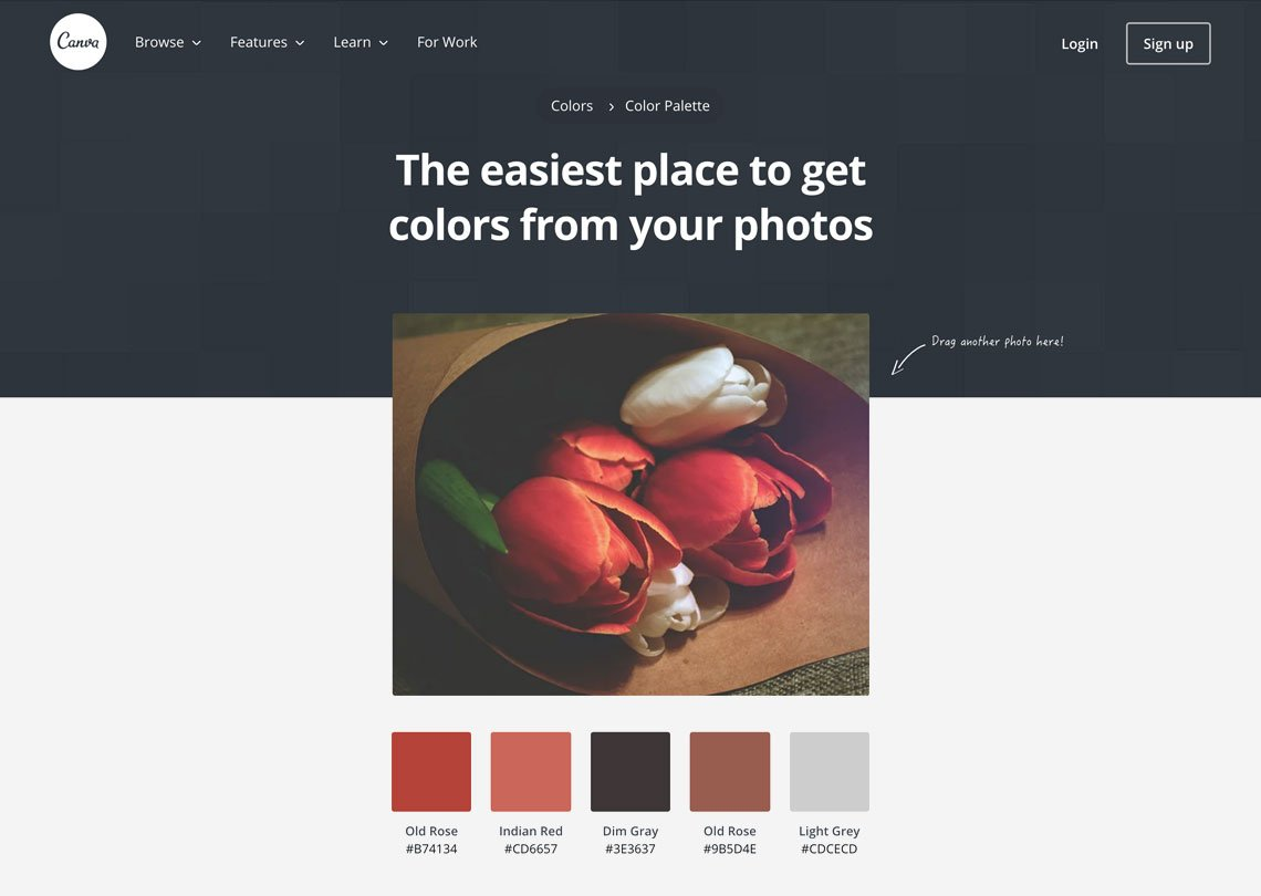 Fantastic Color Palettes And Where to Find Them - The ...