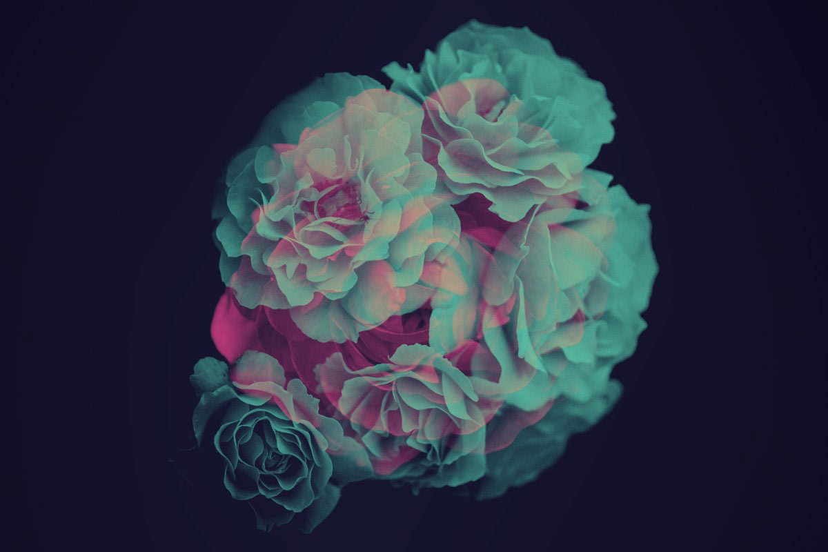 Elegant Flower: Free Photoshop Brushes - The Designest