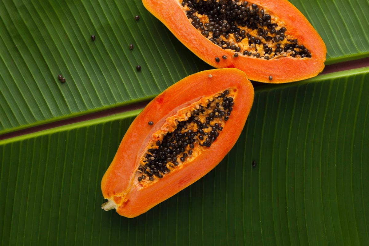 Papaya wallpaper by Miguel Maldonado