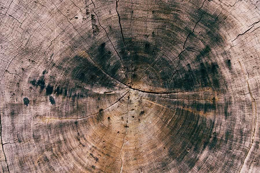 Crack Wood Texture