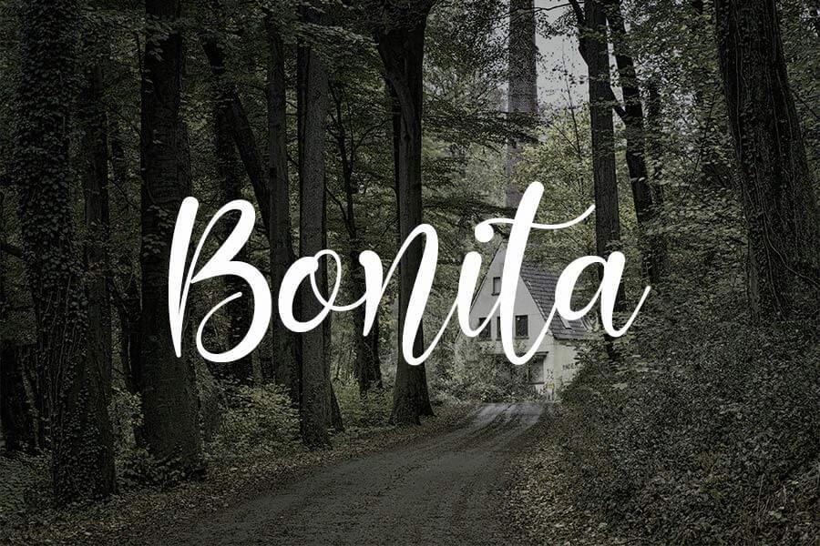 Bonita Script Font