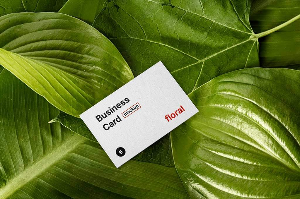 Plants and Business Card Mockup