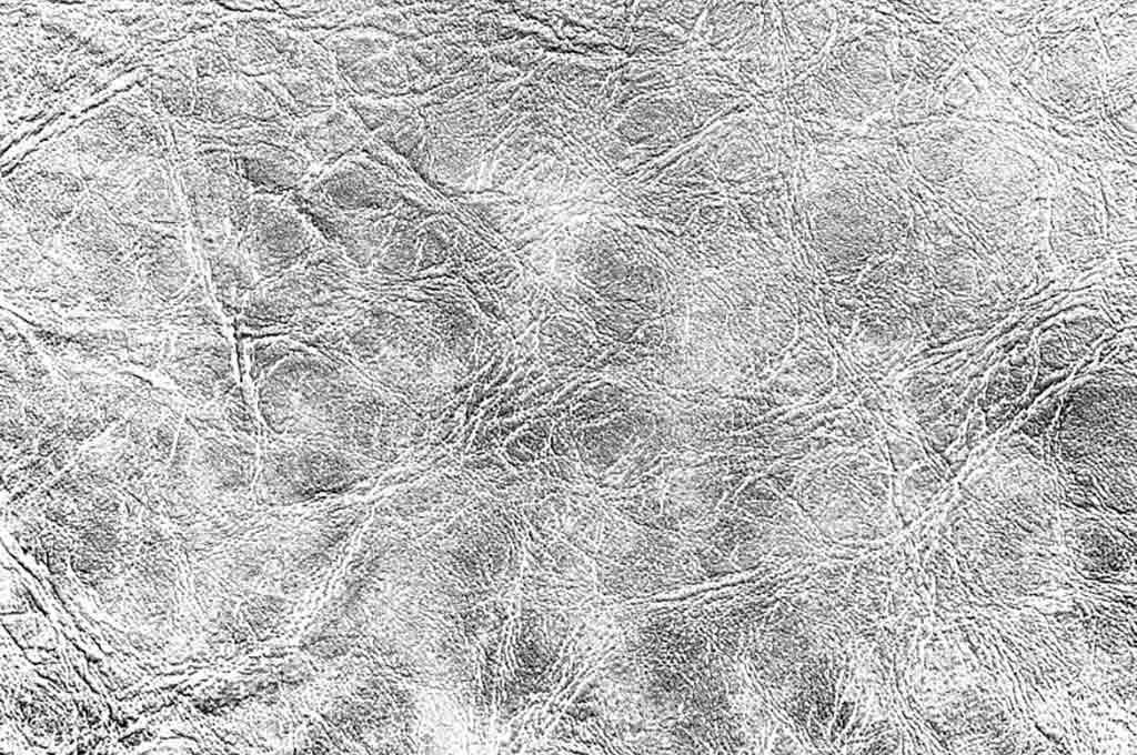 Abstract Leather Texture Monochrome