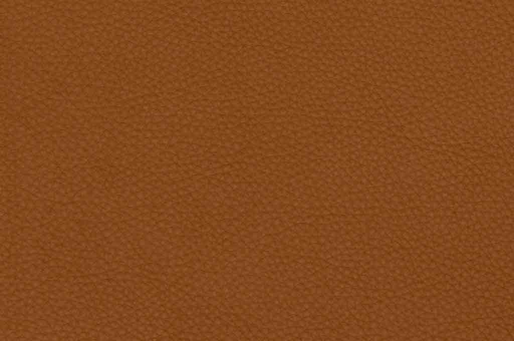 Free Leather Texture — Light Brown
