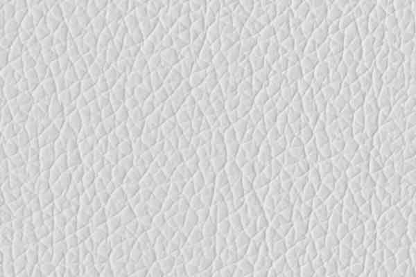 Free Smooth Leather Texture