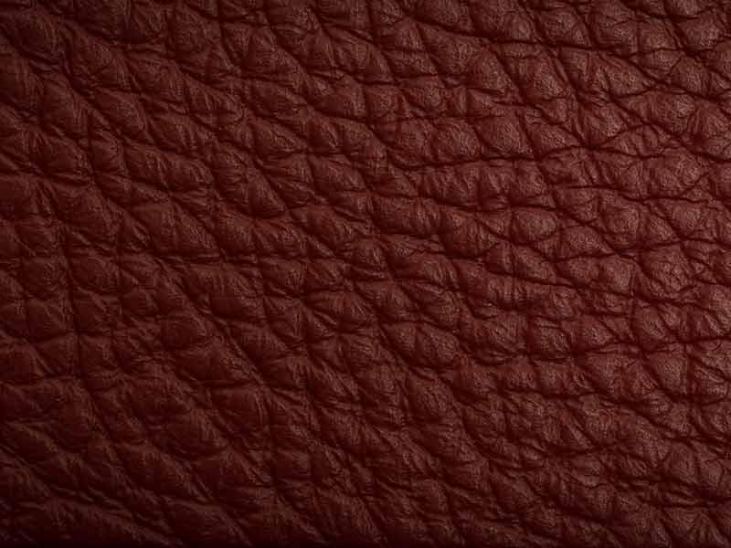 Leather Strip Macro Shot