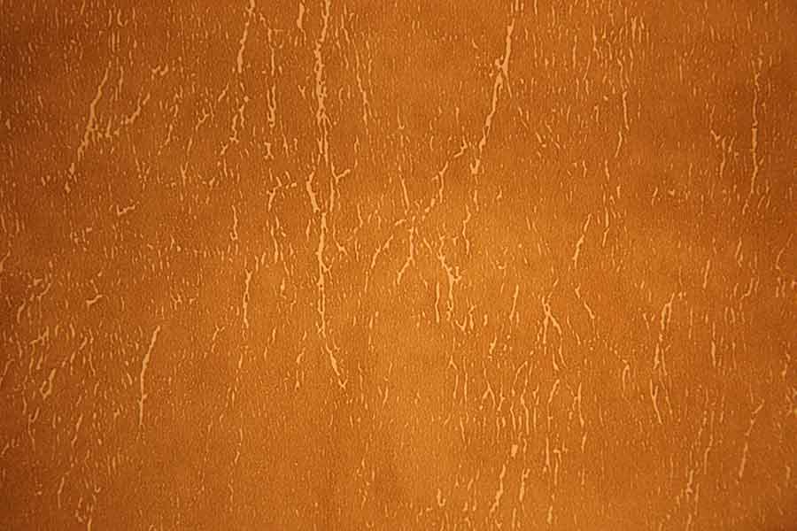 Leather Tan Texture Distress