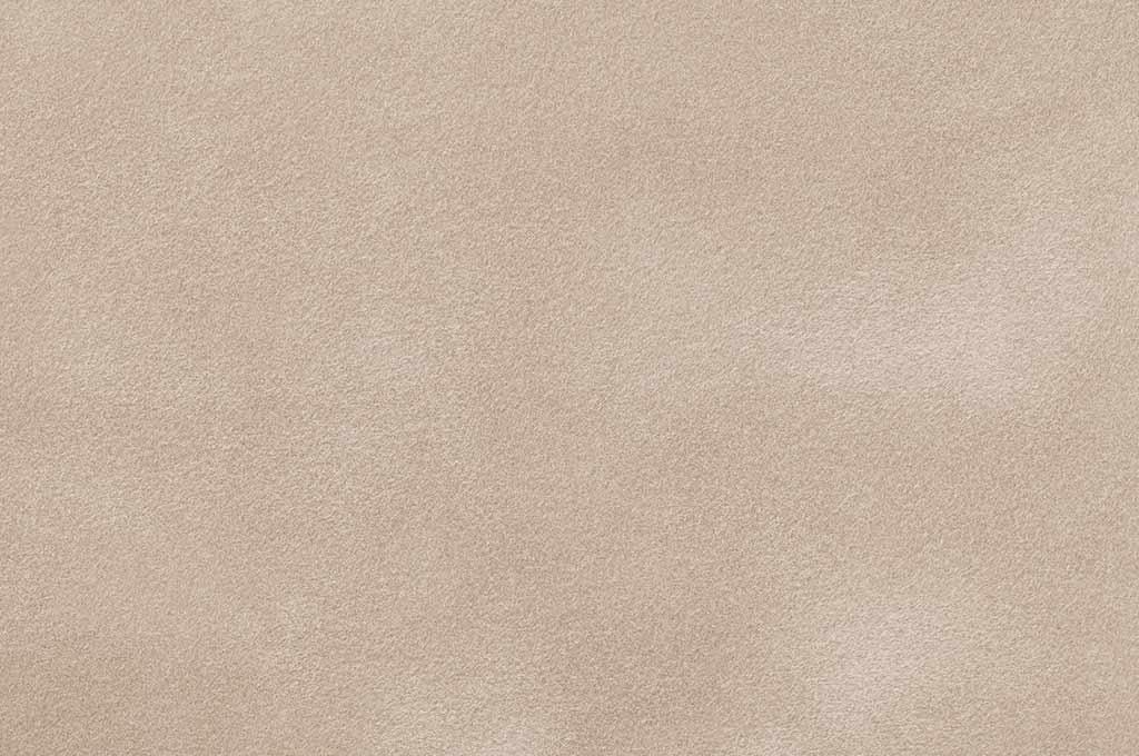 Light Beige Matte Suede Texture