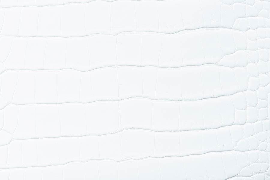 Plain White Leather Textured Background