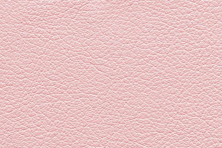 Rose Free Leather Background