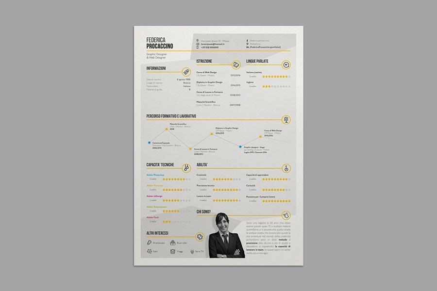 Stylish Infographic Resume