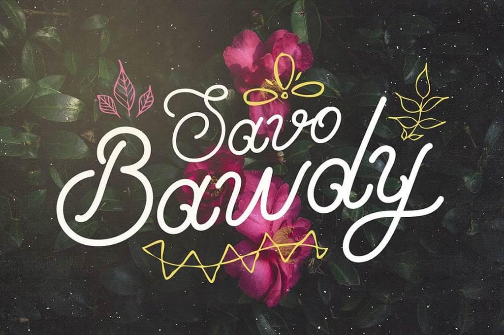 Savo Bawdy - Cursive Typeface