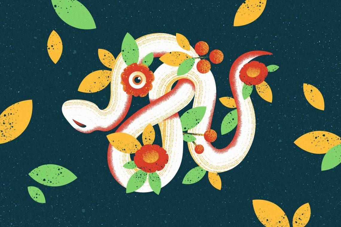 Snake Illustration for Shader Brushes Pack