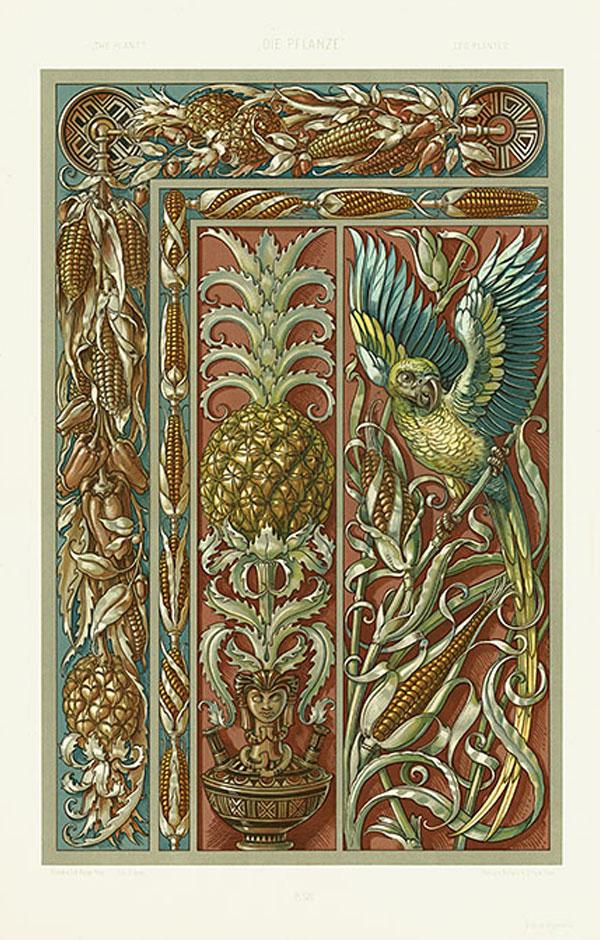 Anton Seder Die Pflanze Art Nouveau Prints 1890