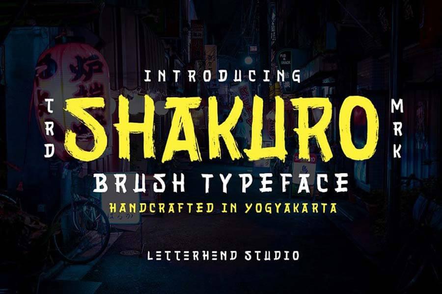Shakuro - Brush Typeface