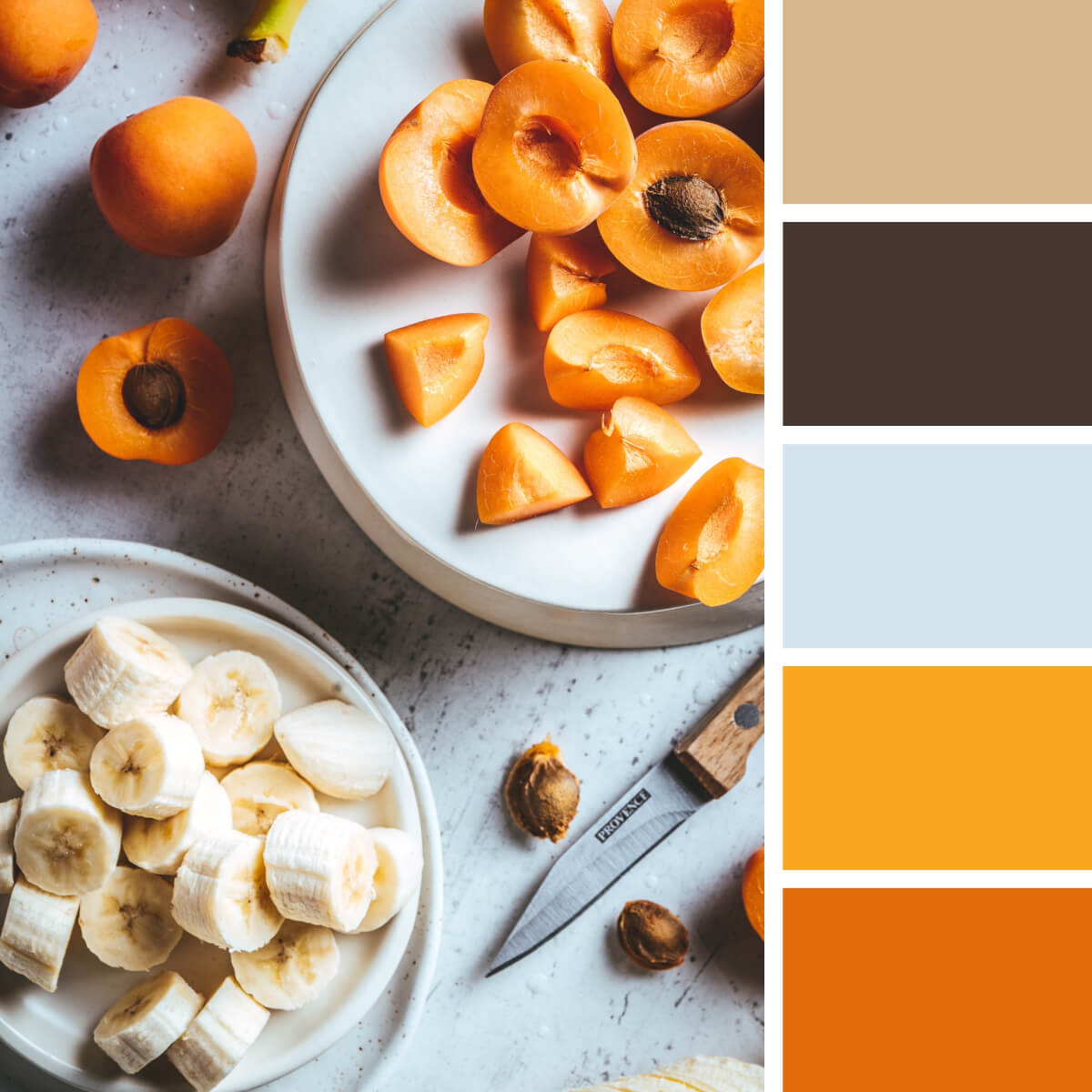 Apricot Orange & Neutral