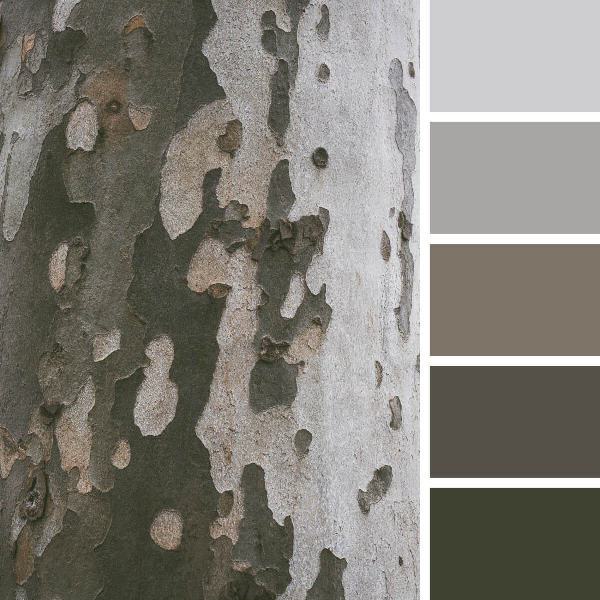 Camouflage Gray & Green