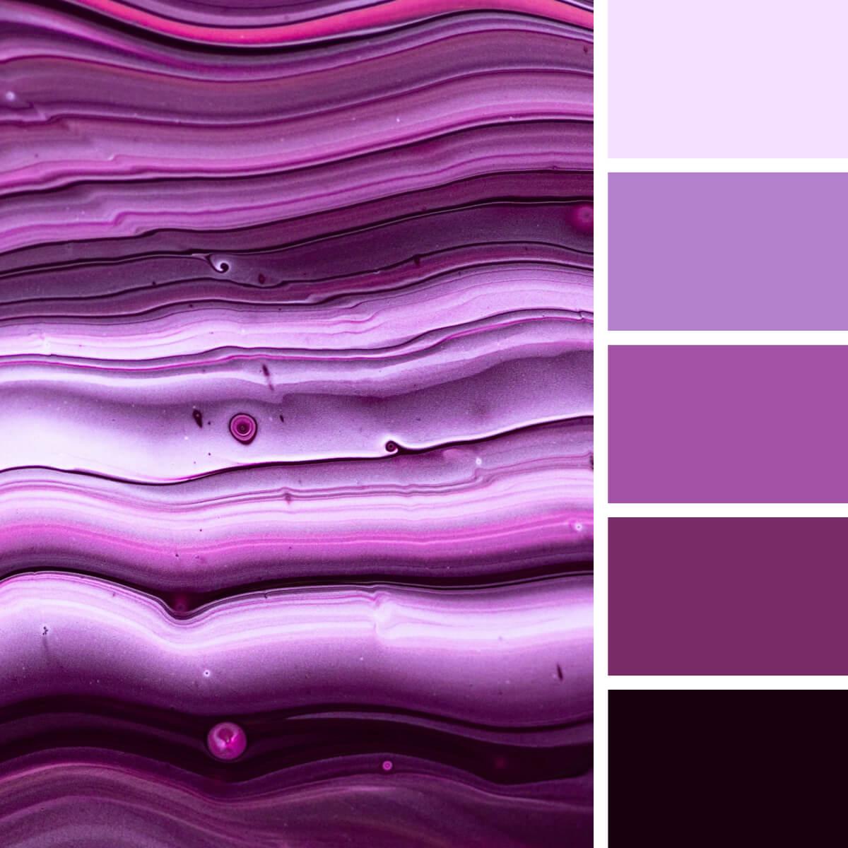 Monochrome Violet & Lilac