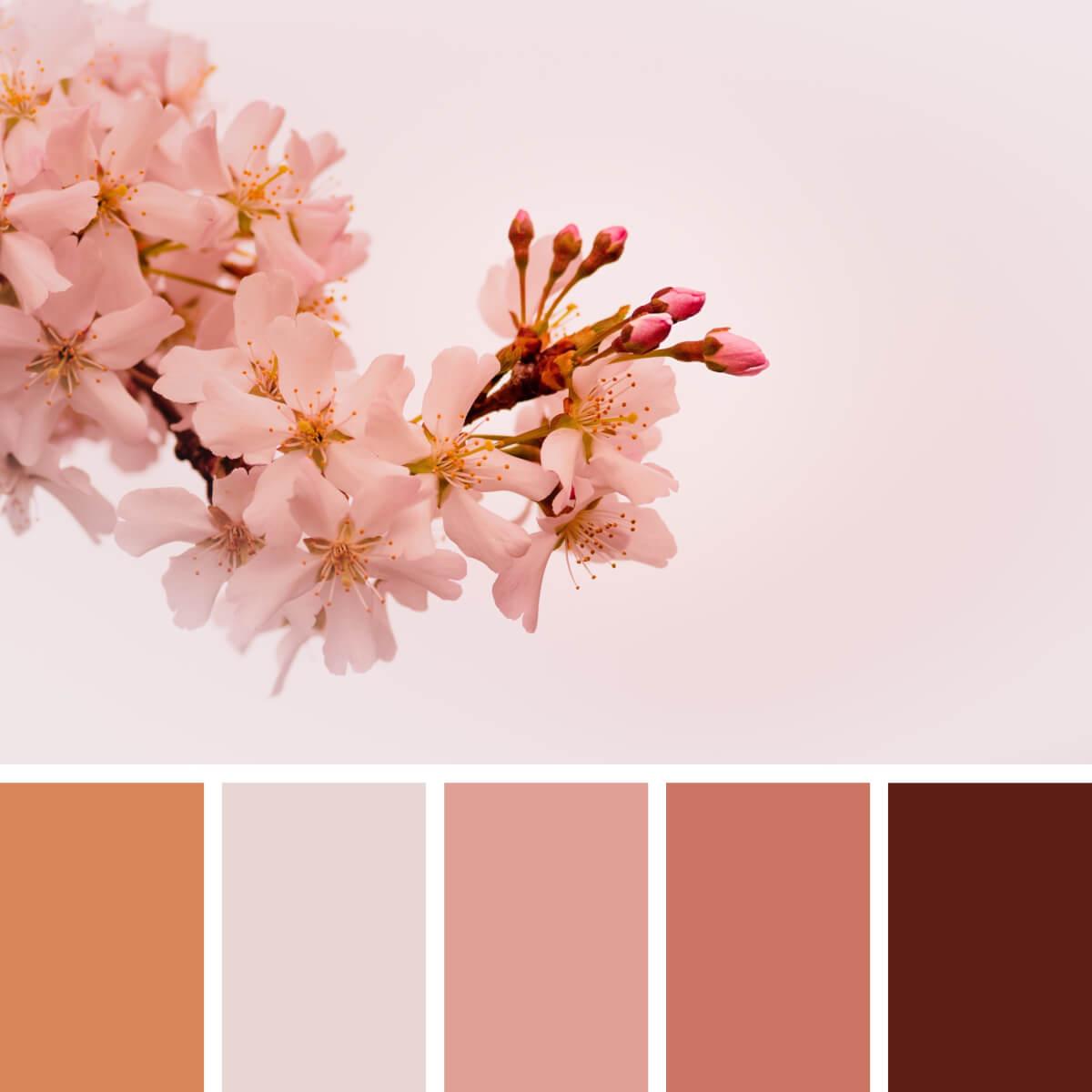 Spring Pink & Peach