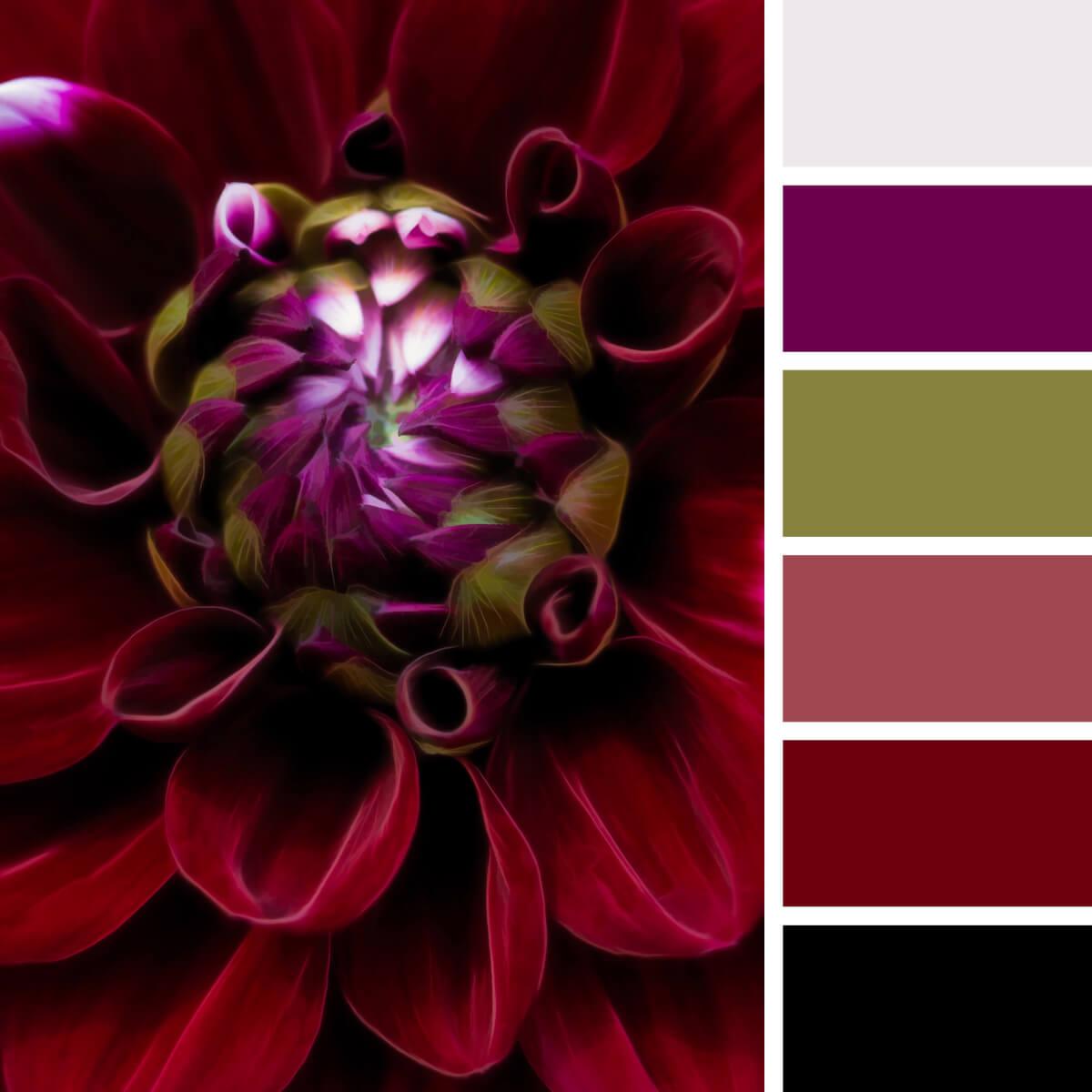 Velvet Red & Burgundy