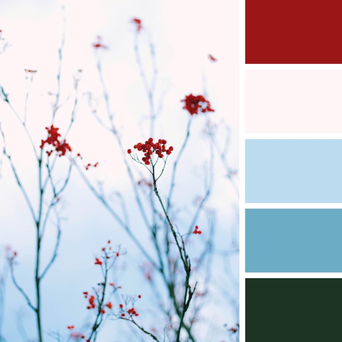 Winter Red & Frozen Blues